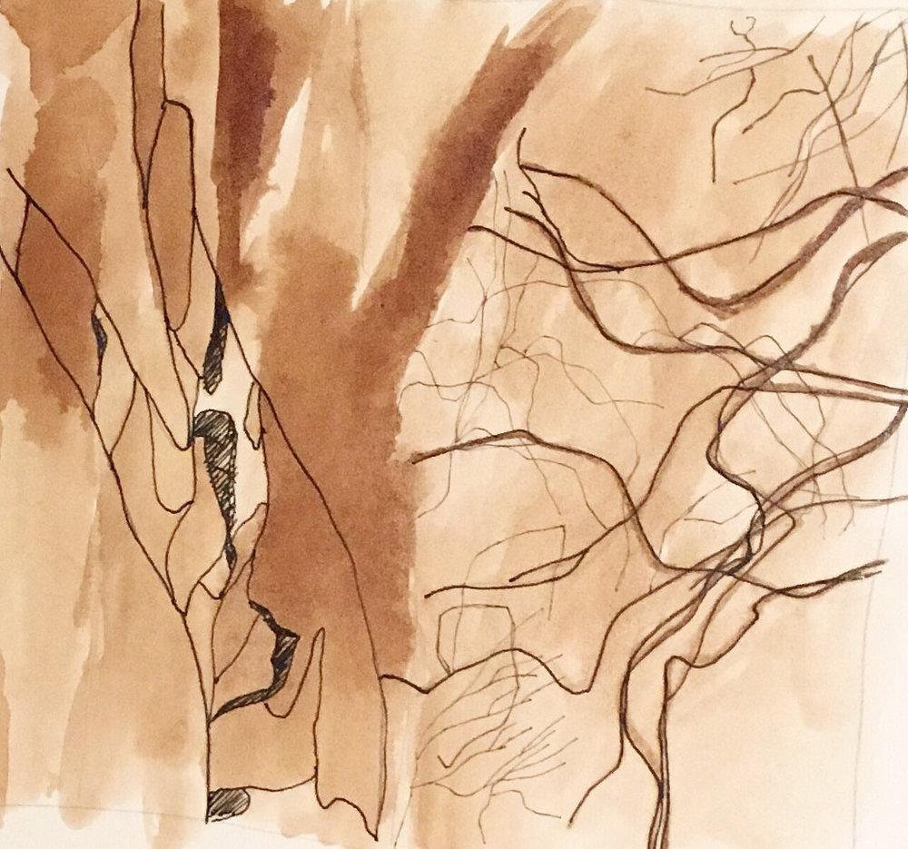 sketch 15