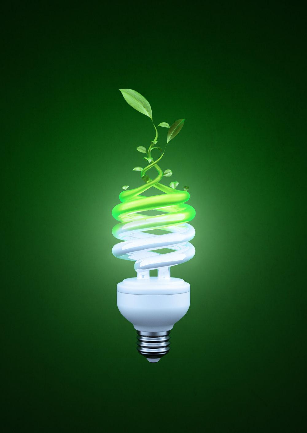 Eco_bulb.jpg