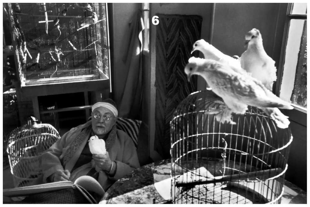 bresson_matisse_doves.jpg