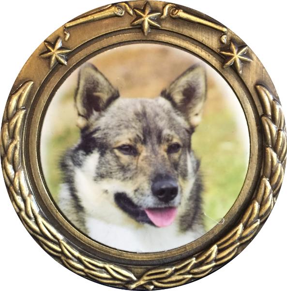 Leonie Darling Medal