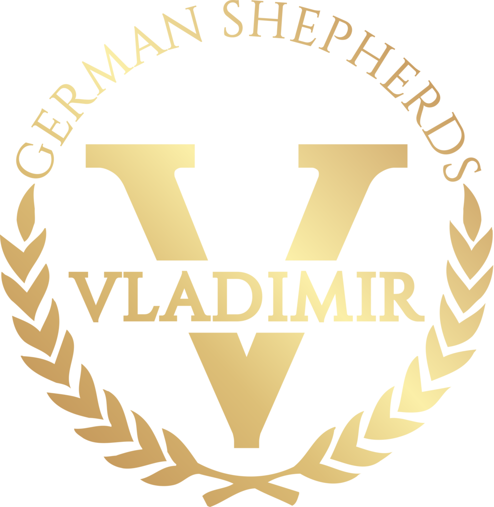 Vladimir Kurt logo mart 2019 final GOLD.png