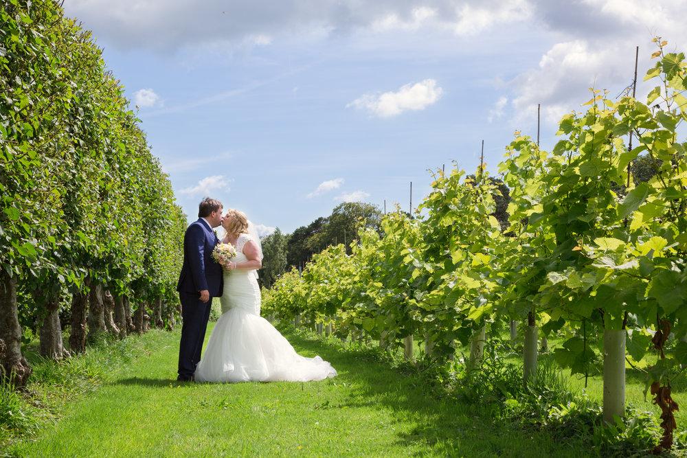 Bride and groom photos at llanerch vineyard