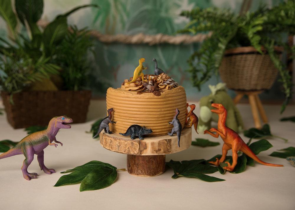 Dinosaur themed cake smash, cardiff, caerphilly, south wales