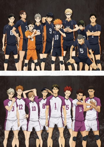 Karasuno (top) & Shiratorizawa (bottom)