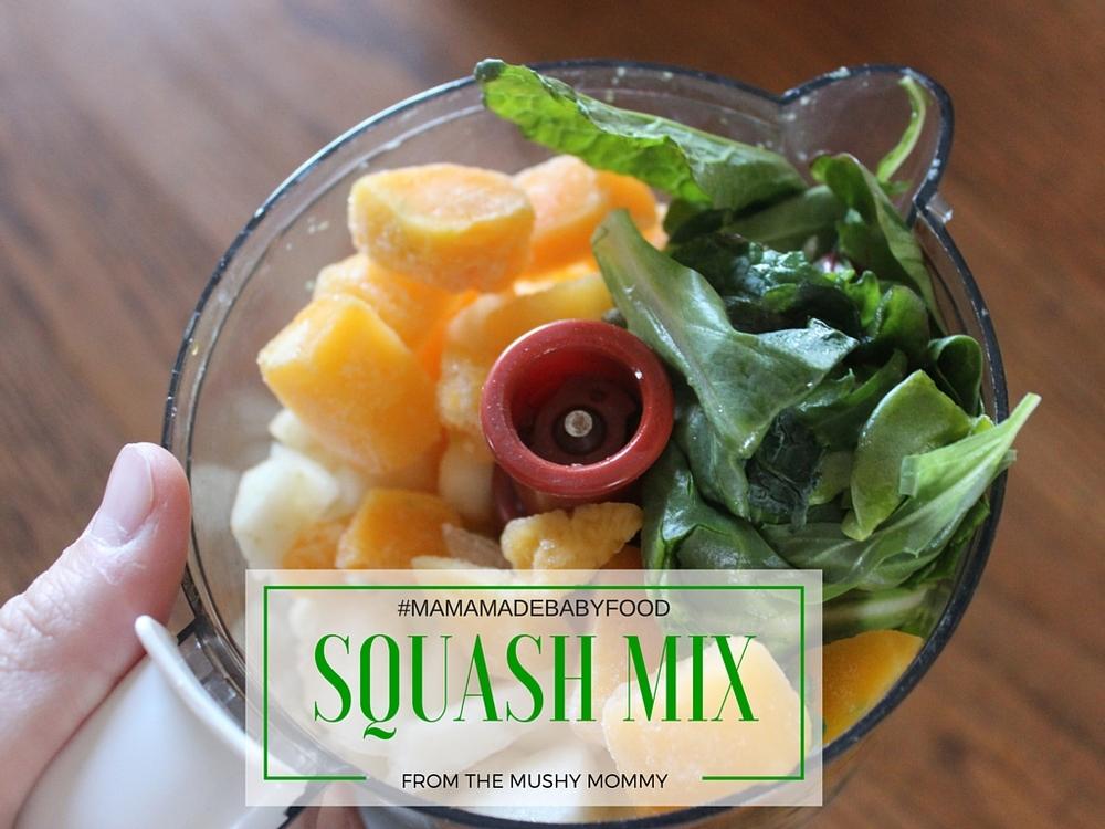 Squash Baby Food