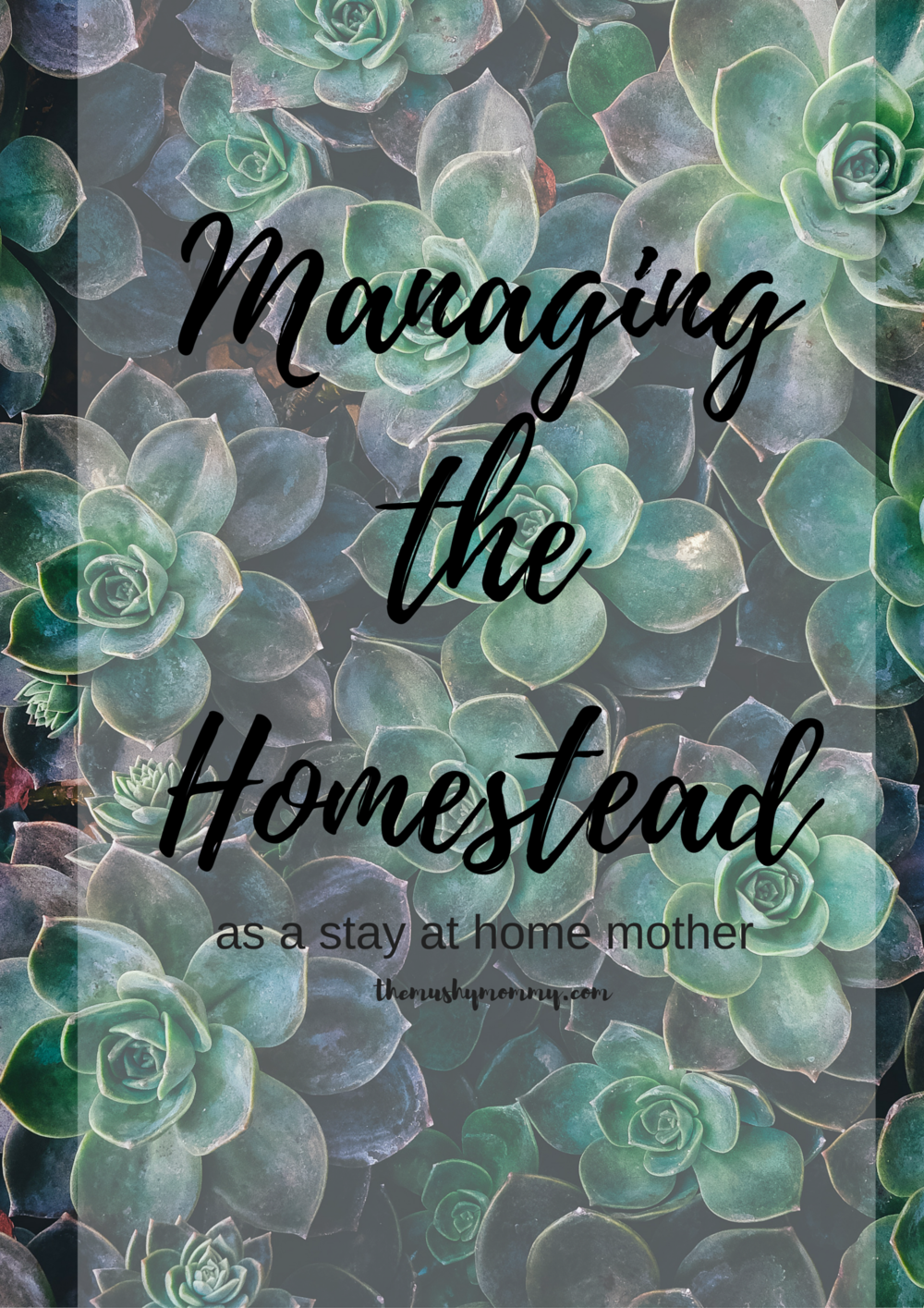 Managing the Homestead