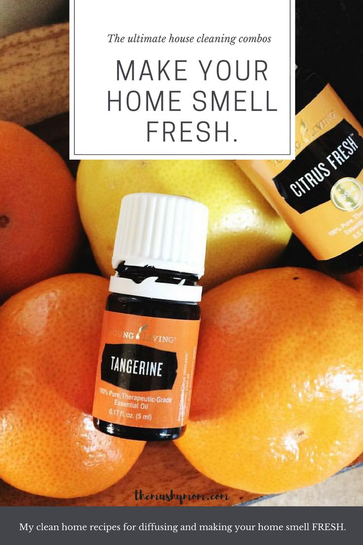 Essential Oils for a Fresh Smell