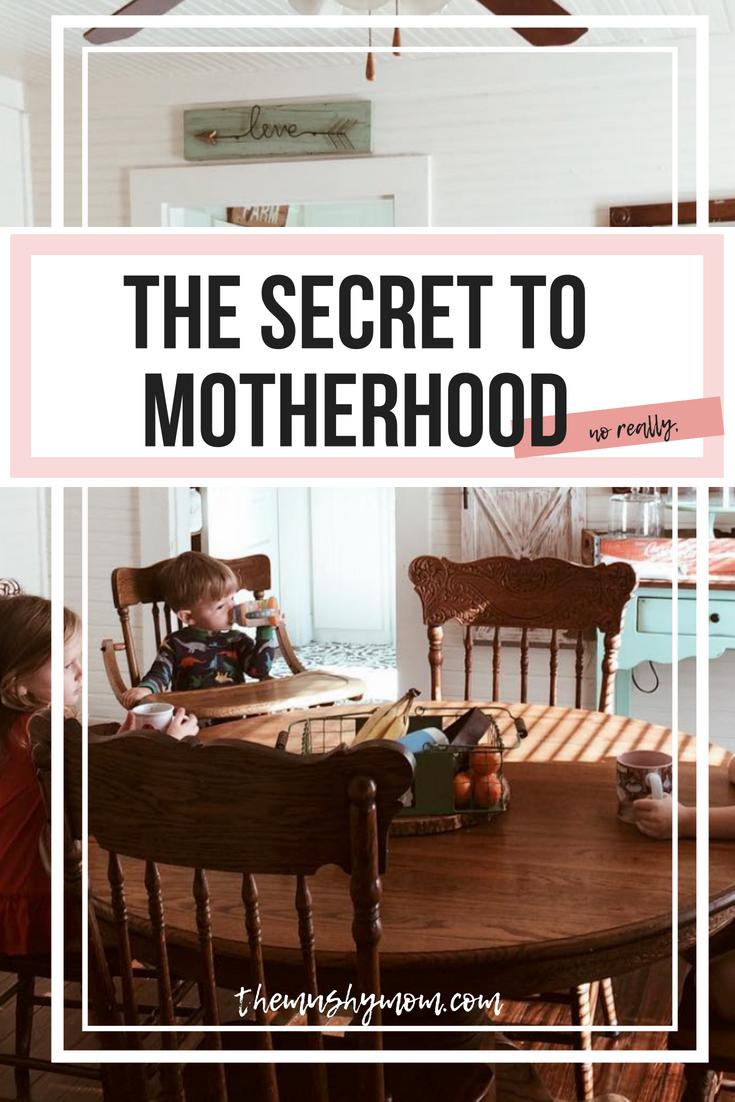 Secret to Motherhood.png