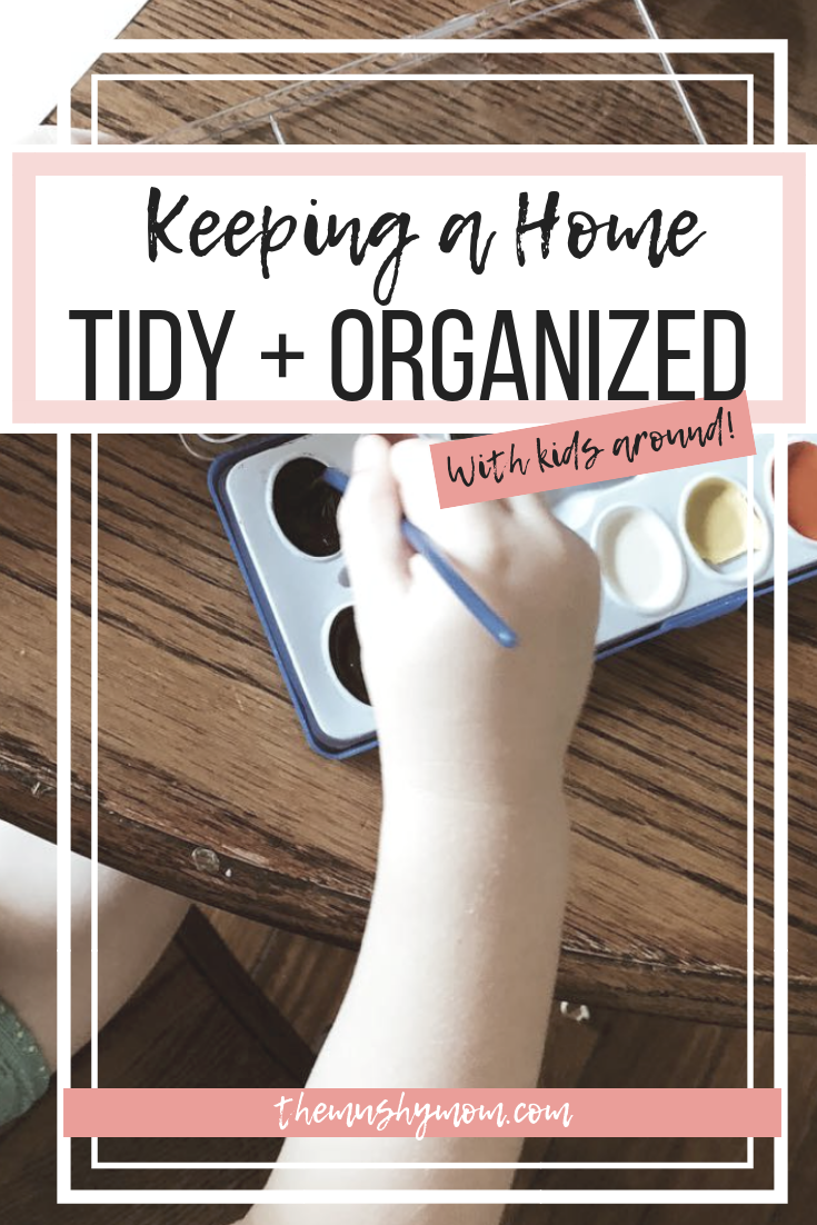 Keeping a Home Tidy and Organized