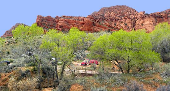 red cliffs campground3 zion camping rental.jpg