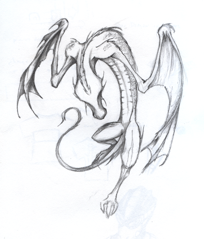 a quick sketch of a dragon using graphite