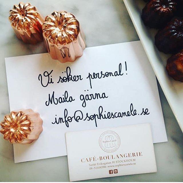 JOBB! Vi på Sophies canelé ska nu förstärka vårt team!!! Vi söker en ansvarig för bartender (30 tim/v) som är frankofil ;) vi vill gärna att du har tidigare erfarenhet och personnummer. Skicka gärna CV och ett personligt brev till info@sophiescanele.se Bienvenue!