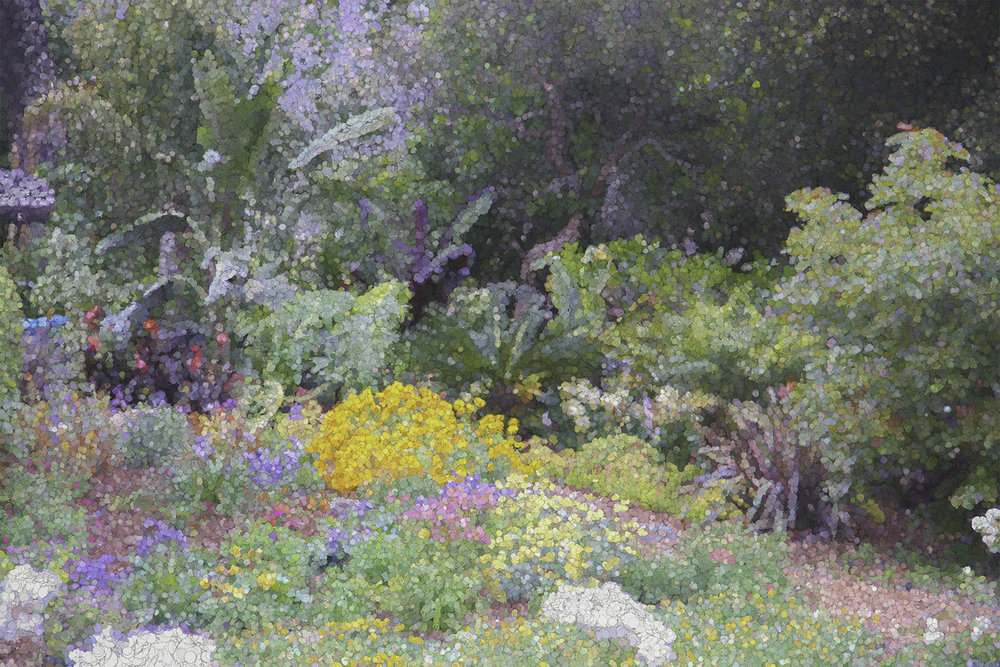 Impressionist version of perennials in Montecito. See CONTACT PAGE.