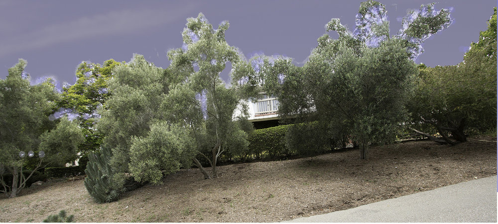 driveway and Mesa house before design (banner)