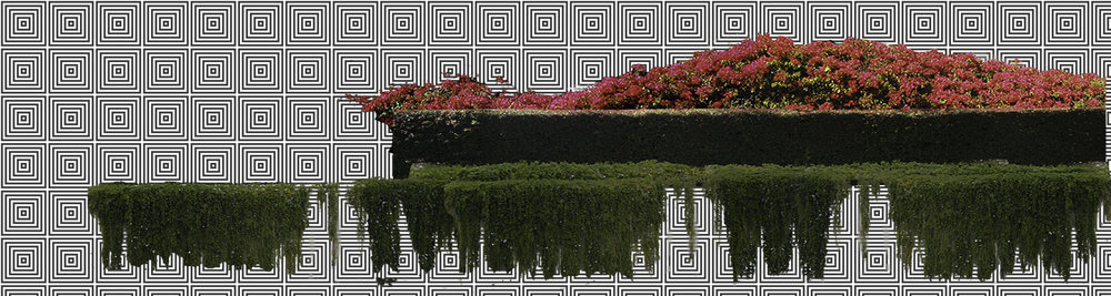 Example of Romantic Garden Co. design process. The bougainvillea, eugenia and rosemary once were separate photographs. They were merged into one photo, SEE ABOVE.  SEE BELOW FOR NEW IDENTITY.  Photo design idea for a parking lot.