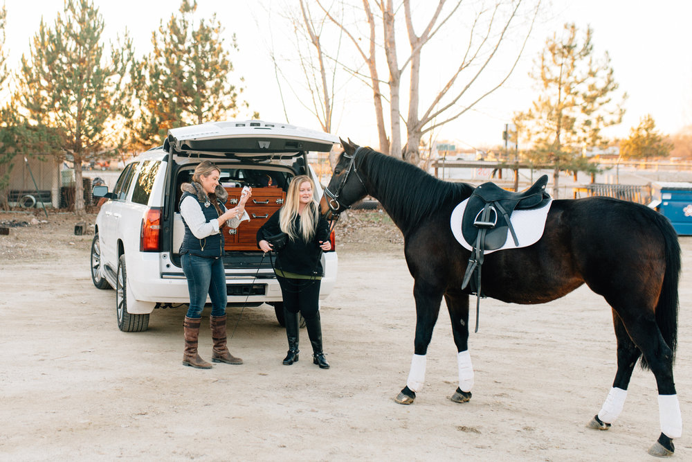 Boise equine photographer