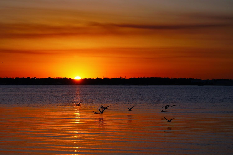 Sunset Near Titusville