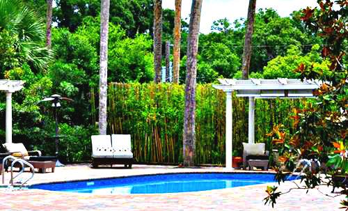 mansion 40.jpg