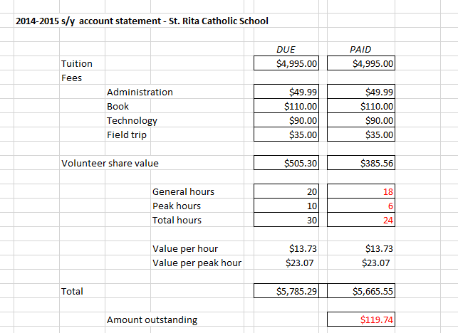 Fig. 2 Account statement with differentiated volunteer hours.