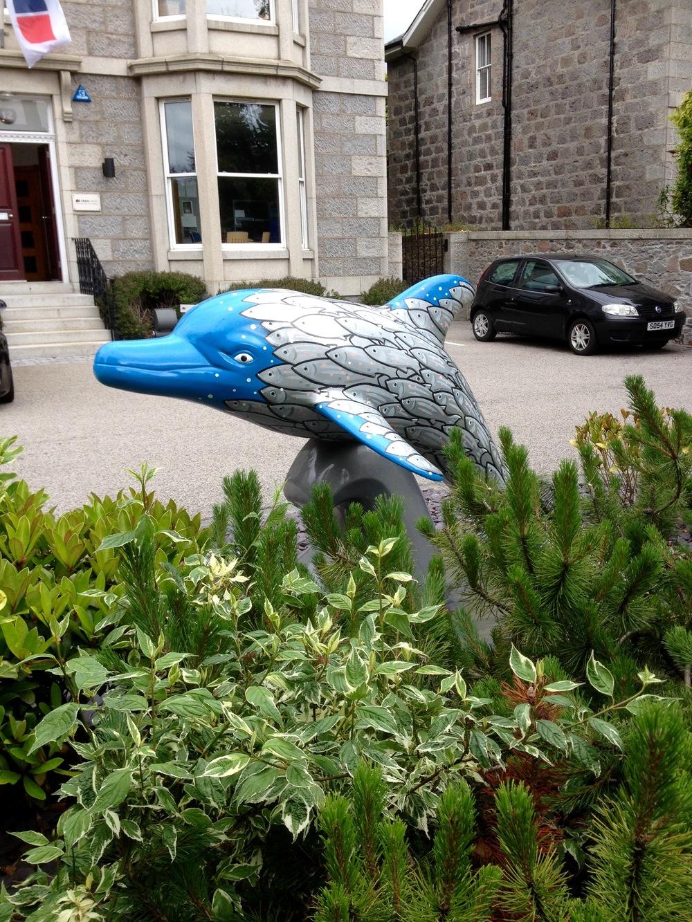 Fishy dolphin