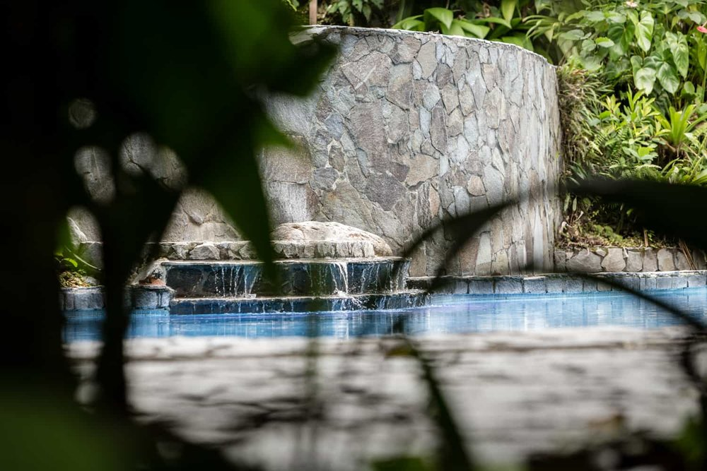 Photo of waterfall through leaves at Lost Iguana's pool in Arenal.