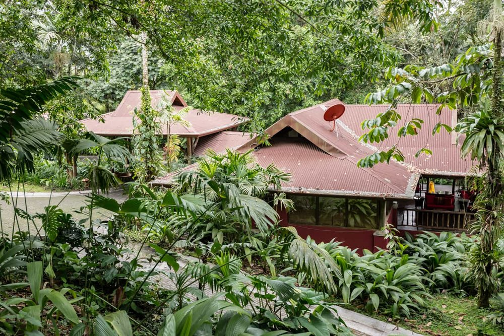 Lost Iguana Resort & Spa reception building in rainforest.