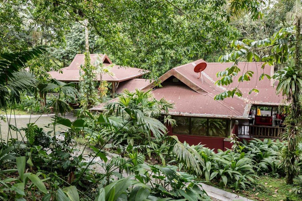 Lost Iguana Resort & Spa reception building in rainforest.