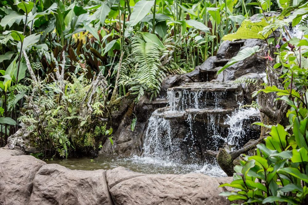 Side view of waterfall at edge of wedding ceremony location in hummingbird garden.