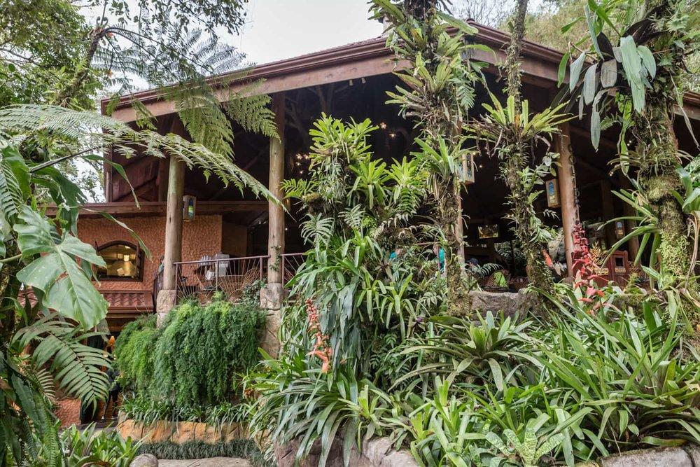 Front entrance of restaurant facing hummingbird garden & animal sanctuary.