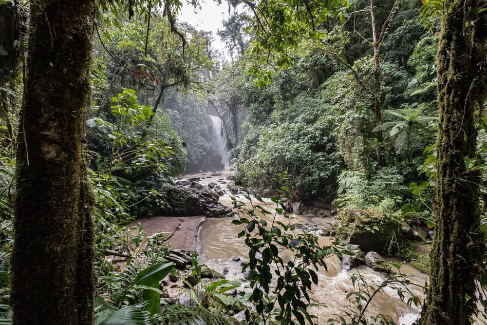 Great location for waterfall elopement or wedding on La Paz Gardens riverbank.