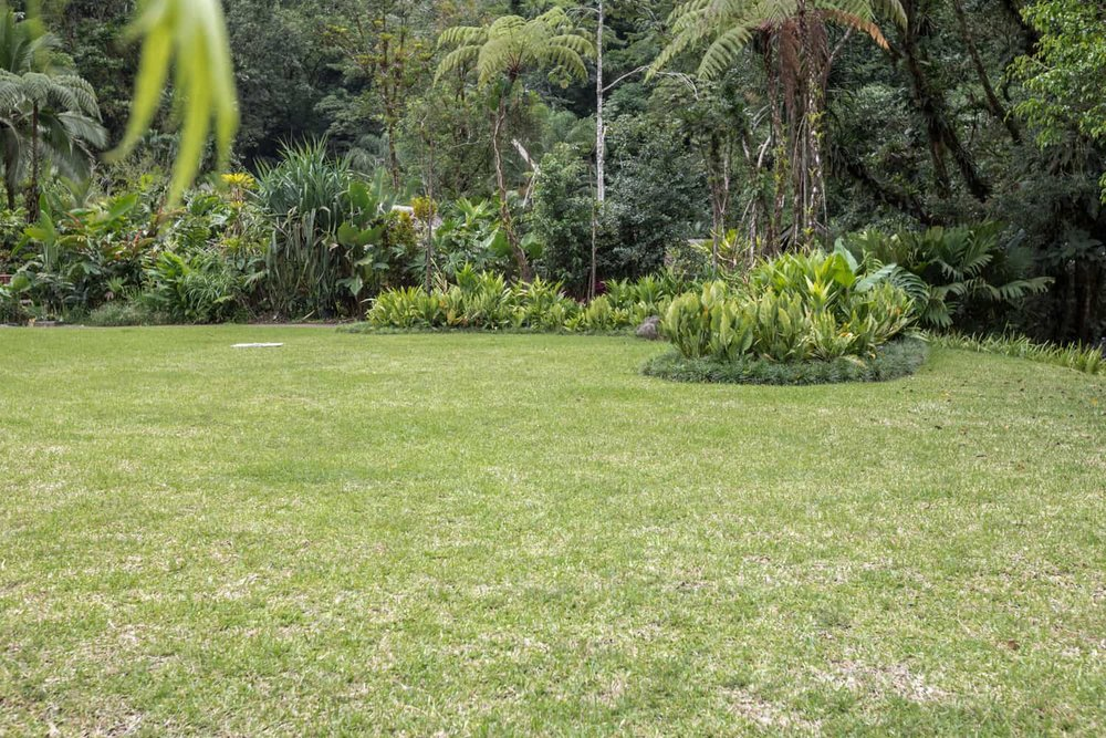 Rear area of garden wedding venue at rainforest resort Tabacon.