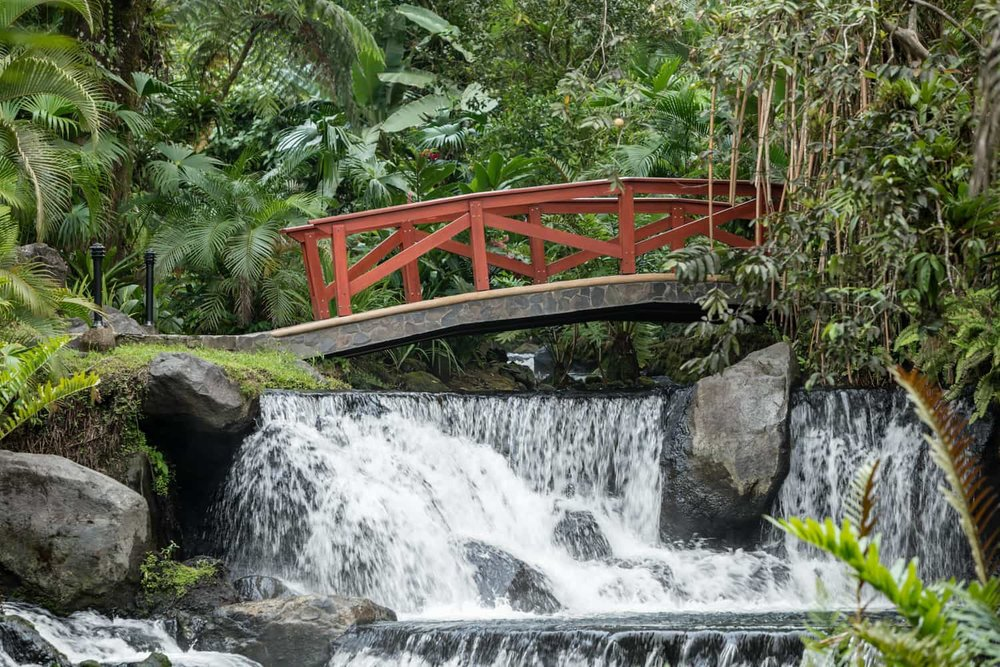 Romantic wedding location on red bridge over waterfalls at Tabacon.