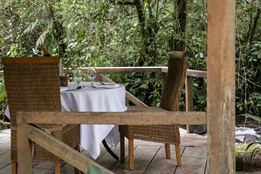 Lovely table for newlyweds in cloud forest setting.