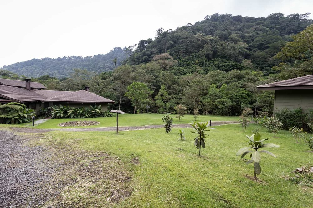 Site for ceremony on lawn in cloud forest near mountains.
