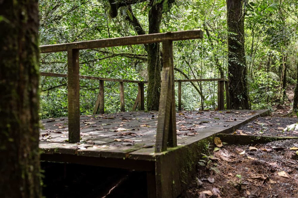 Cloud forest surrounds wood deck that is ideal for intimate weddings.
