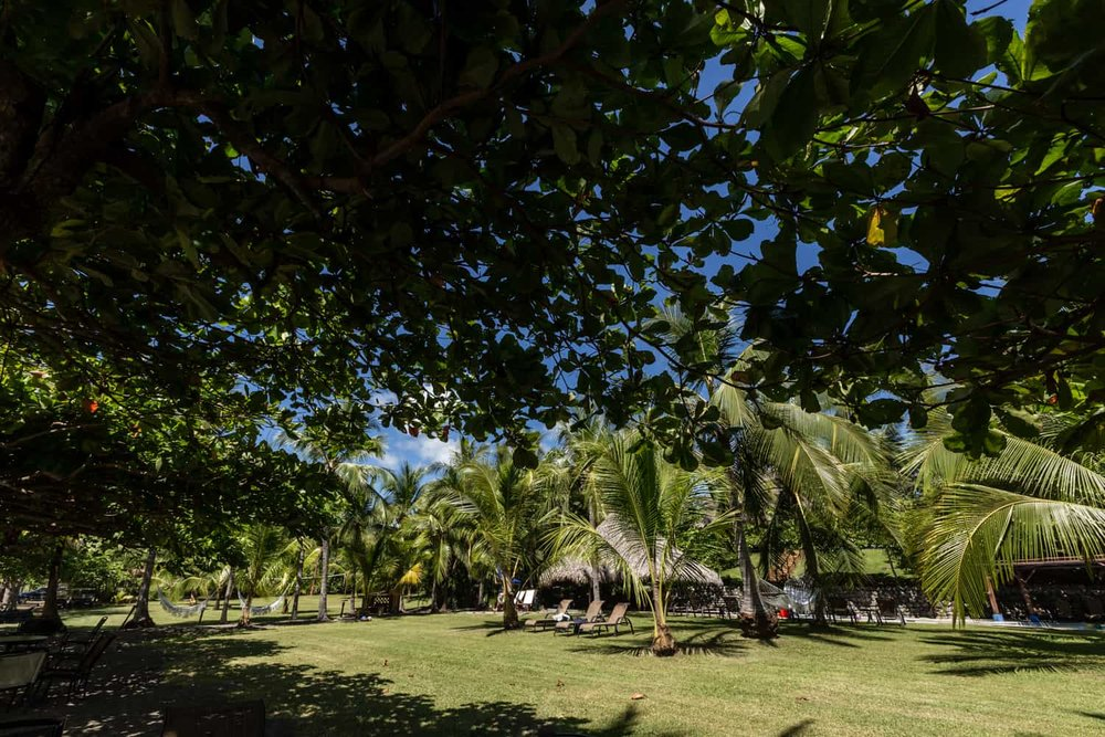Photo of Hotel Punta Islita beach garden area for weddings.