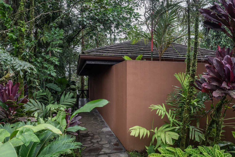 View of guest room surrounded by rainforest and a botanical garden.