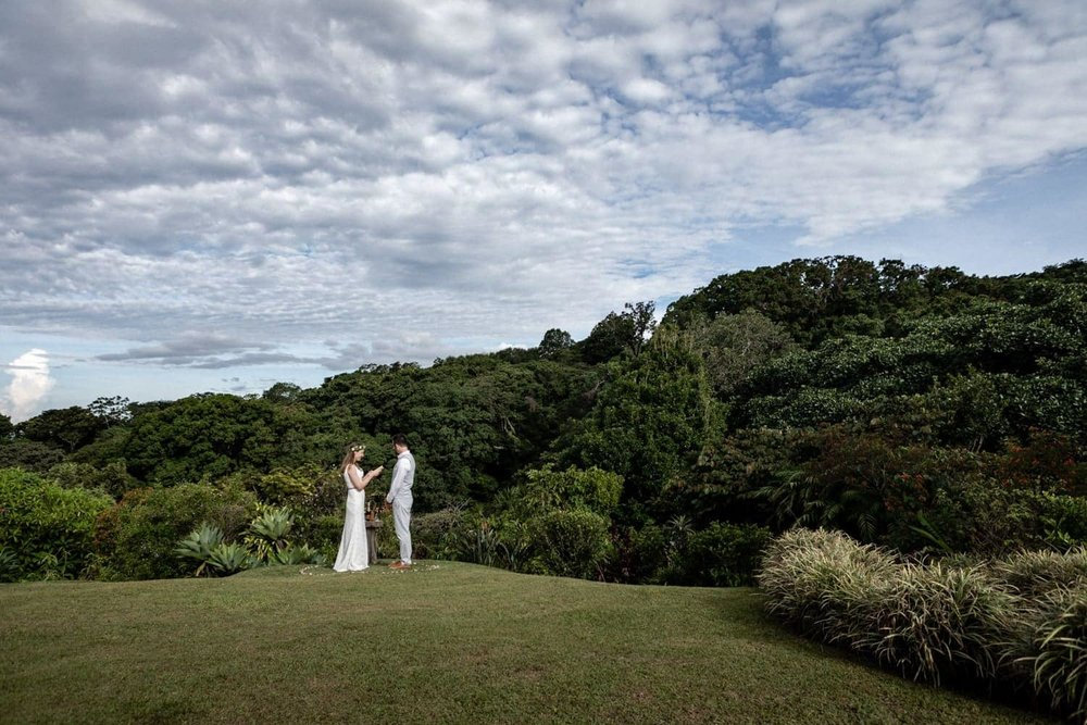 Panoramic photo of couple getting married in garden surrounded by rainforest.