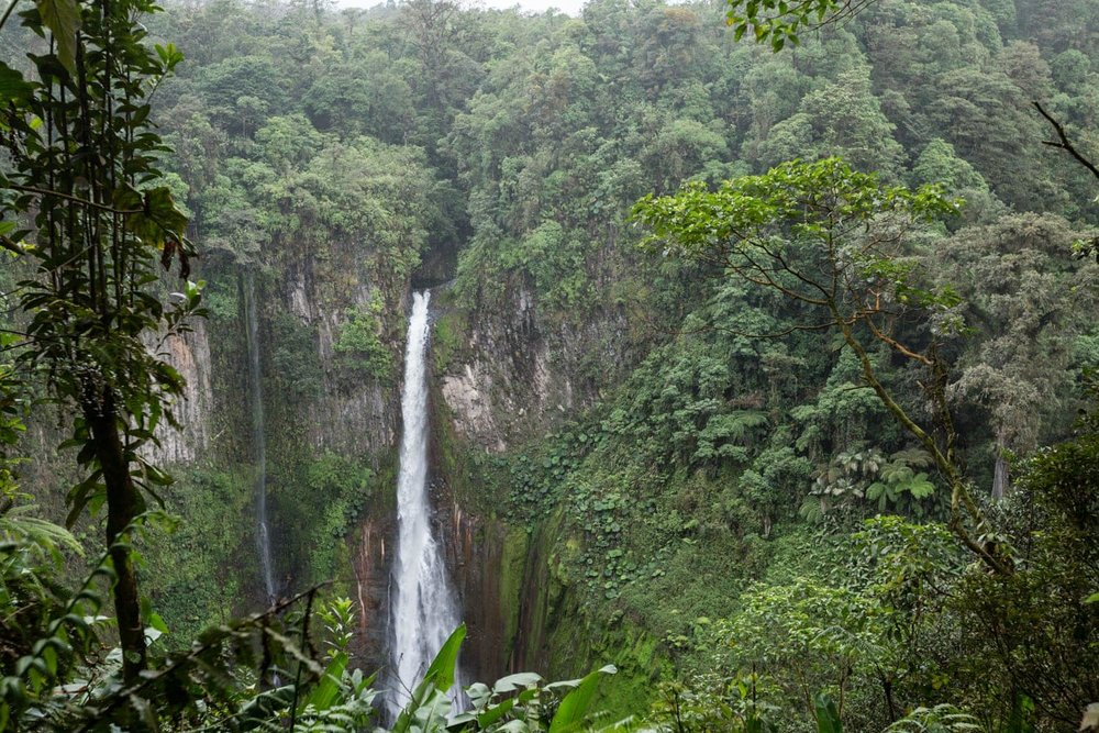 View of Catarata del Toro from the start of the walk to its base.