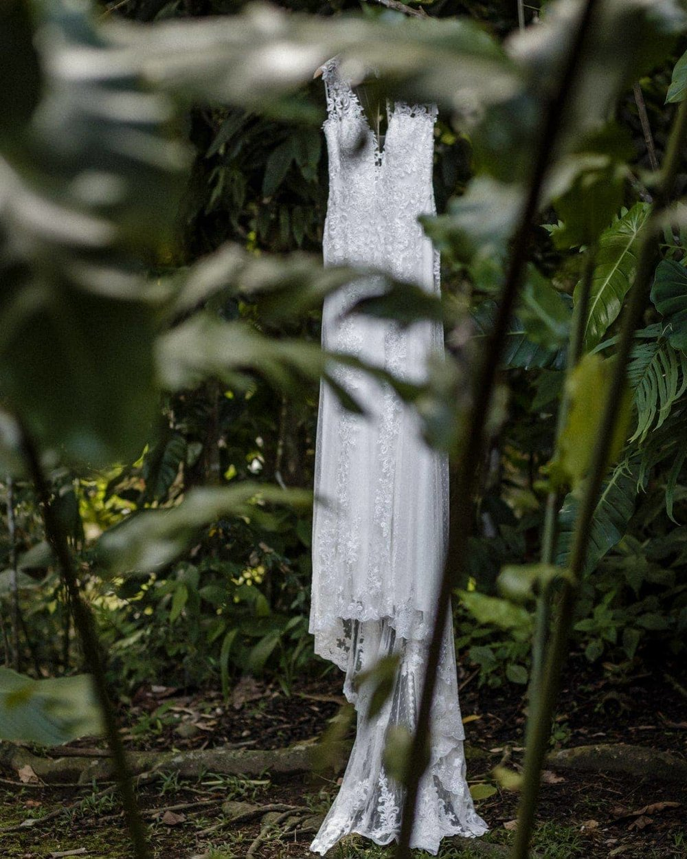 White wedding dress hanging from tree in tropical garden.