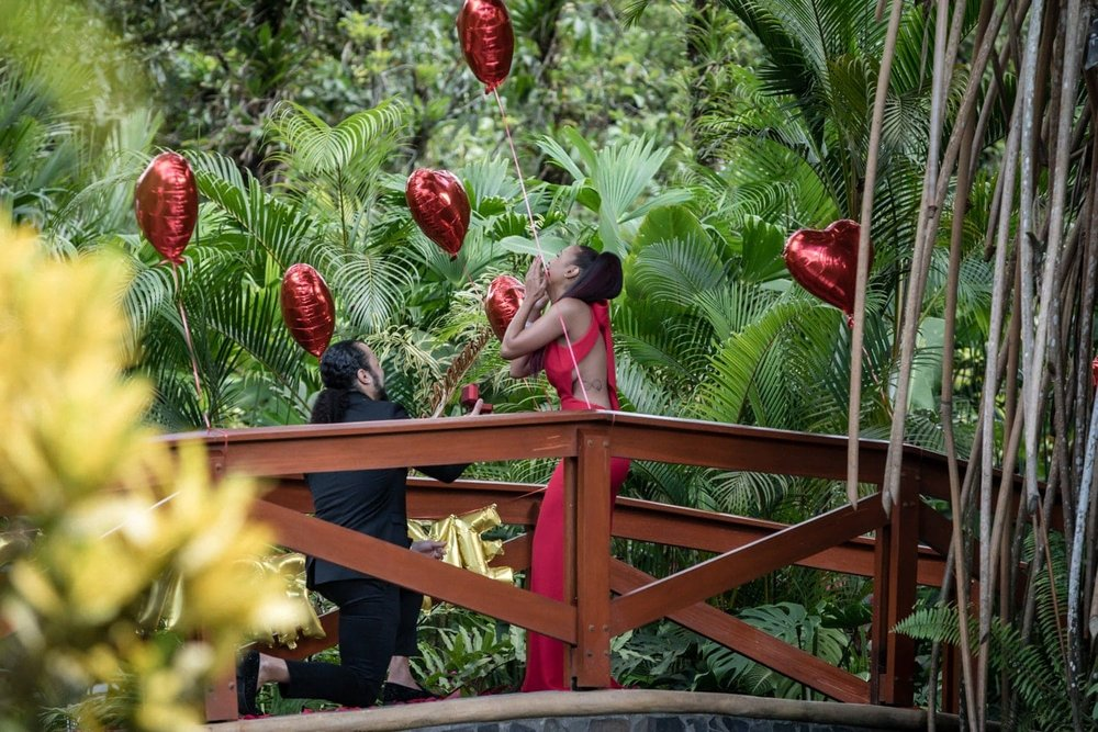 Photo of him asking her to marry him on picturesque red bridge.