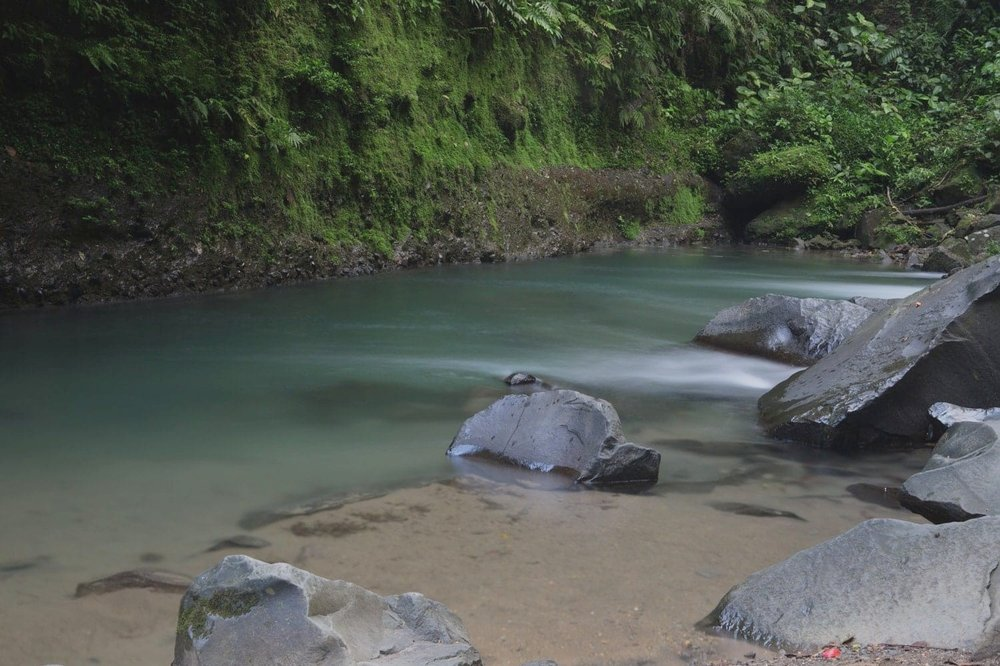 Part of a lagoon near the base of the La Fortuna Waterfall in Costa Rica.