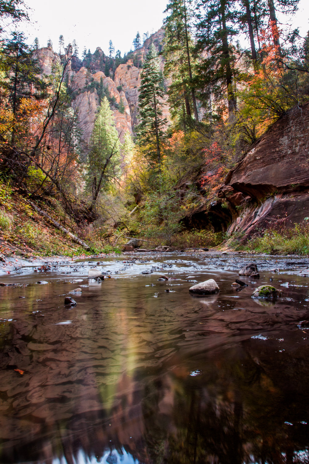 WF Oak Creek Canyon-94.jpg