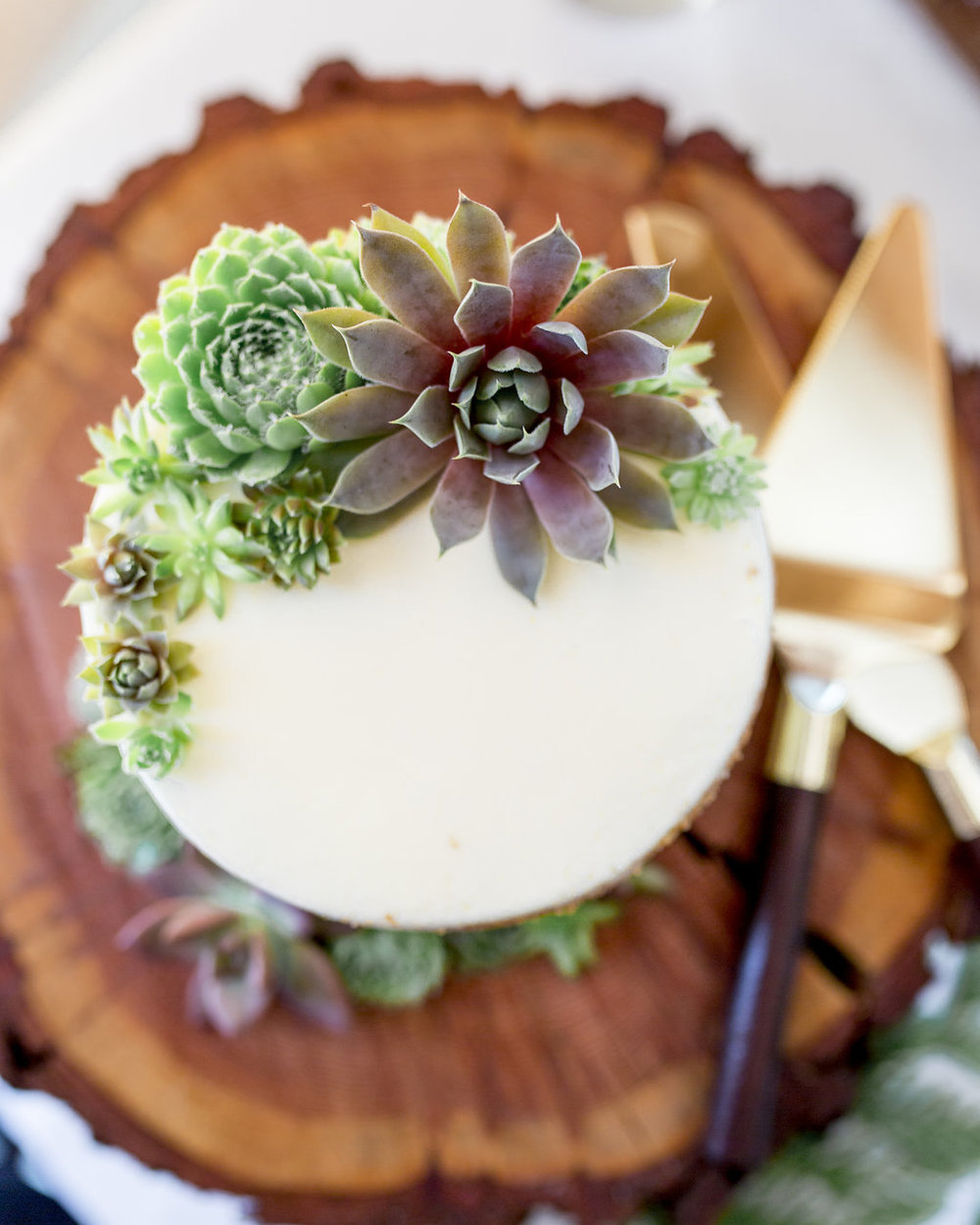 Washington Wedding Planner Coordinator Cabin Creek Lodge Detail Shots Perfectly Planned Moments Whistling Dixie Photography cake.jpg