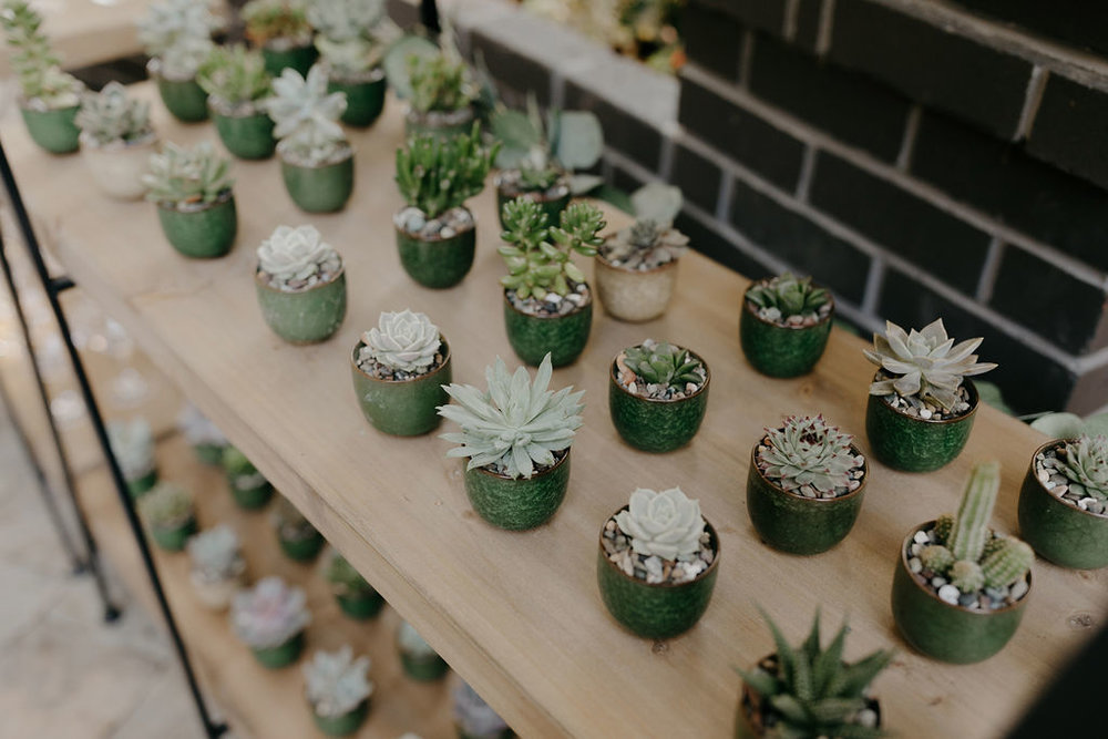 Deer Park Villa Wedding Planner Perfectly Planned Moments Nirav Patel Photography Succulents.JPG