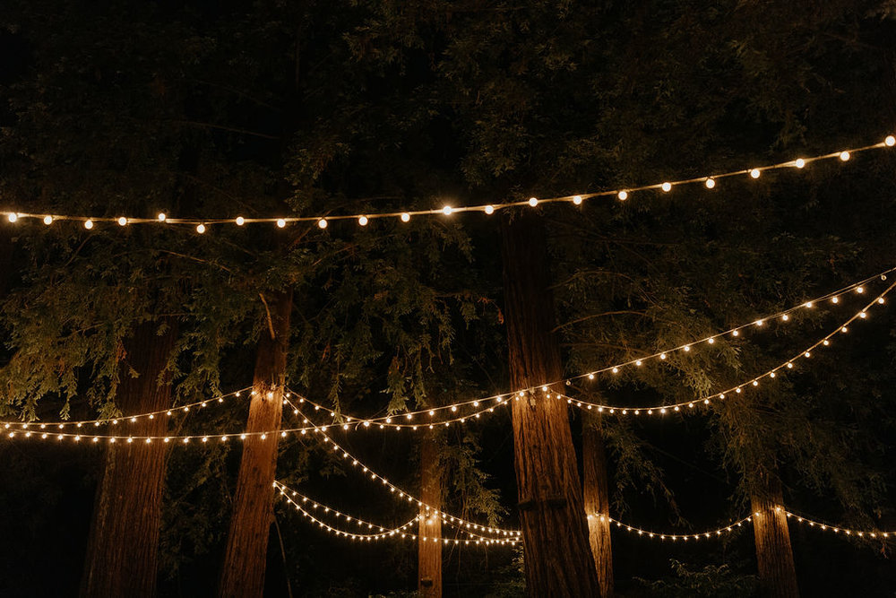 Deer Park Villa Wedding Planner Perfectly Planned Moments Nirav Patel Photography Twinkle Lights.JPG