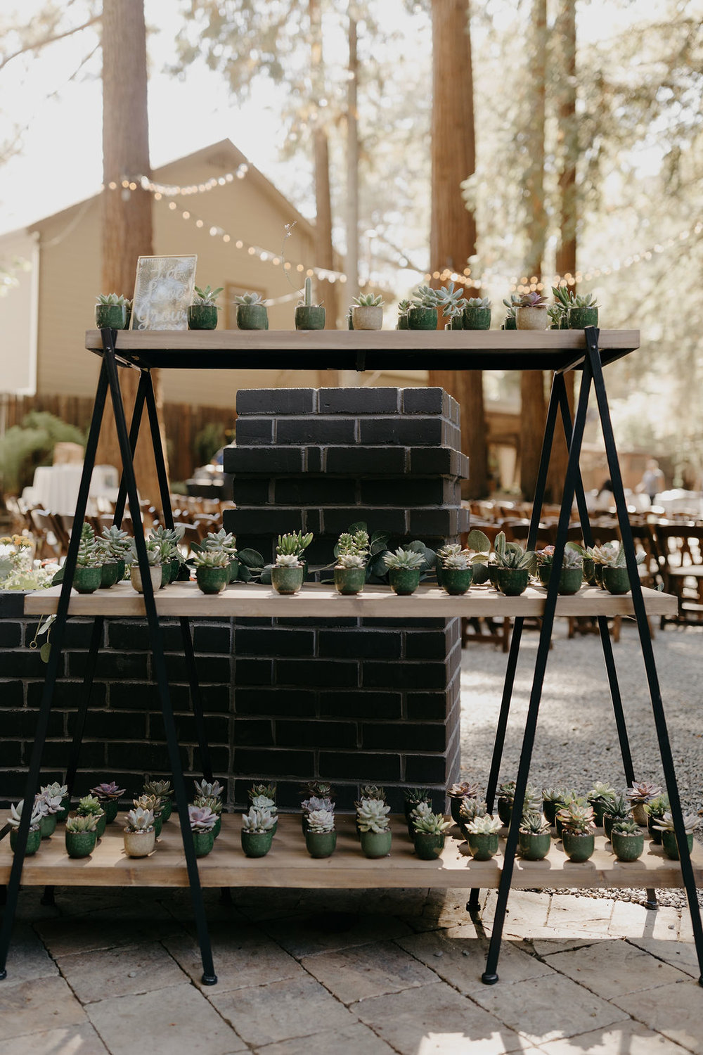 Deer Park Villa Wedding Planner Perfectly Planned Moments Nirav Patel Photography Succulent Wedding Favors.JPG