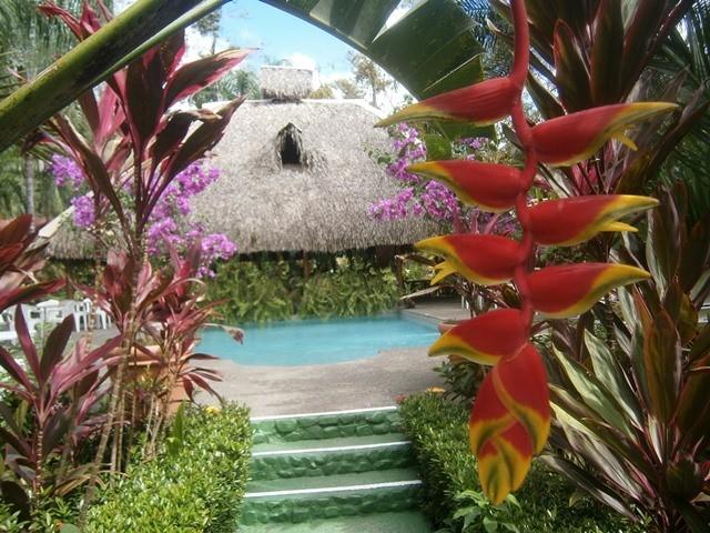 hotel la palapa ecolodge resort.jpg
