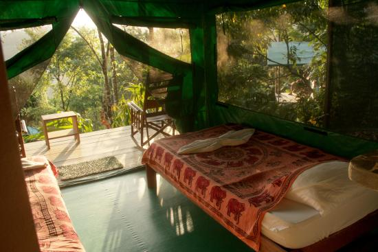 Luna Lodge Beds.jpg