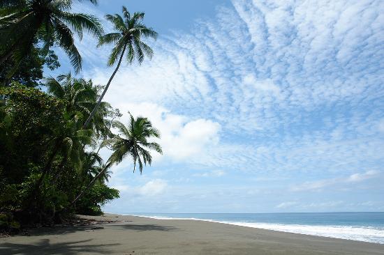 beach-at-el-remanso.jpg